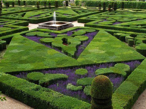 geometric pattern cut into garden