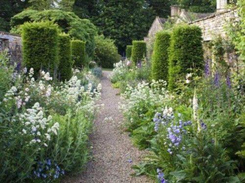 cool toned garden
