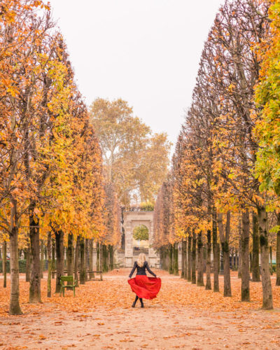 Fall foliage in Paris, France